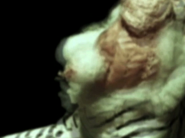 fantasmapromotionalvideo4